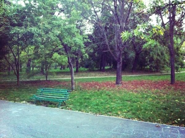 20121010-103556.jpg